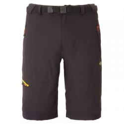 Картинка Штаны The North Face M PASEO SHORT
